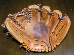 glove_catch_2008.JPG